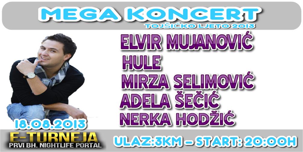 Mega koncert: Elvir Mujanović i prijatelji 18.augusta u Tojšićima !