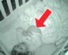 Mama je ostala u nevjerici kada je preko baby monitora vidjela kćerkin ritual prije spavanja!